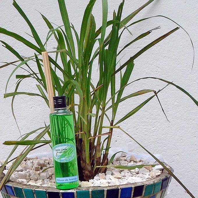 CAPIM LIMÃO - Difusor de Aromas - 240 ml