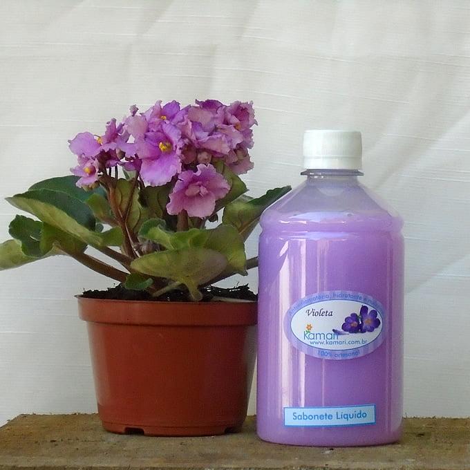 VIOLETA - Refil de Sabonete Fitoterápico Líquido - 500ml