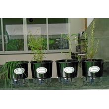 Horta Autoirrigável Raiz - Kit com 4 vasos Médios e 10 Etiquetas