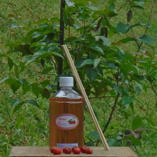 PITANGA - Refil de Difusor de Aromas - 500 ml